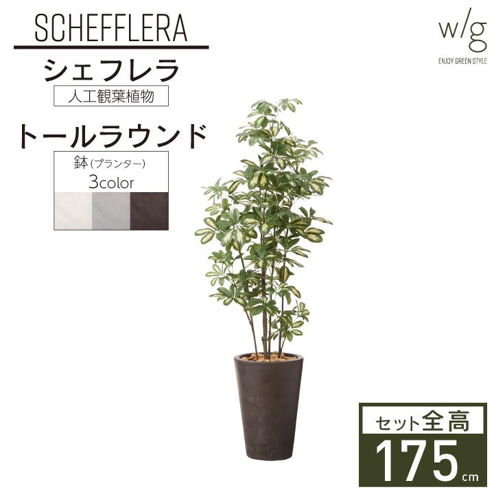 グリーン×プランターセット「w/g シェフレラ×Tall Round」[高さ175cm・人工樹木・観葉植物]