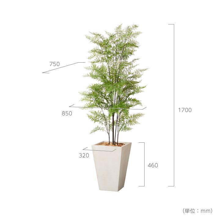 グリーン×プランターセット「w/g ファーン×Tall Square」[高さ170cm・人工樹木・人工観葉植物]