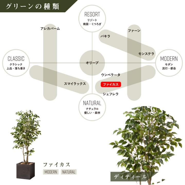 グリーン×プランターセット「w/g ファイカス×Cube」[高さ180cm・人工樹木・人工観葉植物]