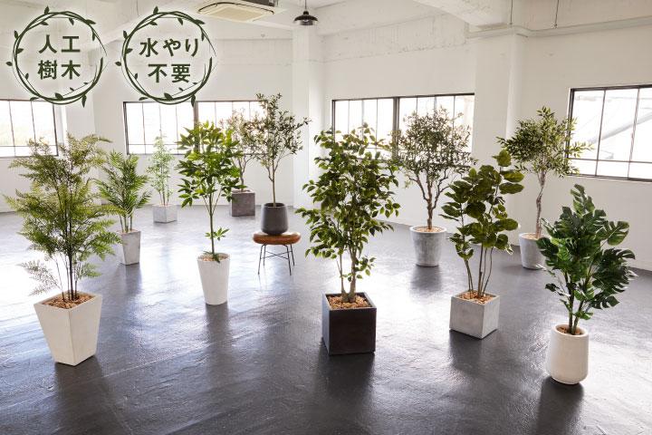 グリーン×プランターセット「w/g ファイカス×Tall Square」[高さ185cm・人工樹木・人工観葉植物]