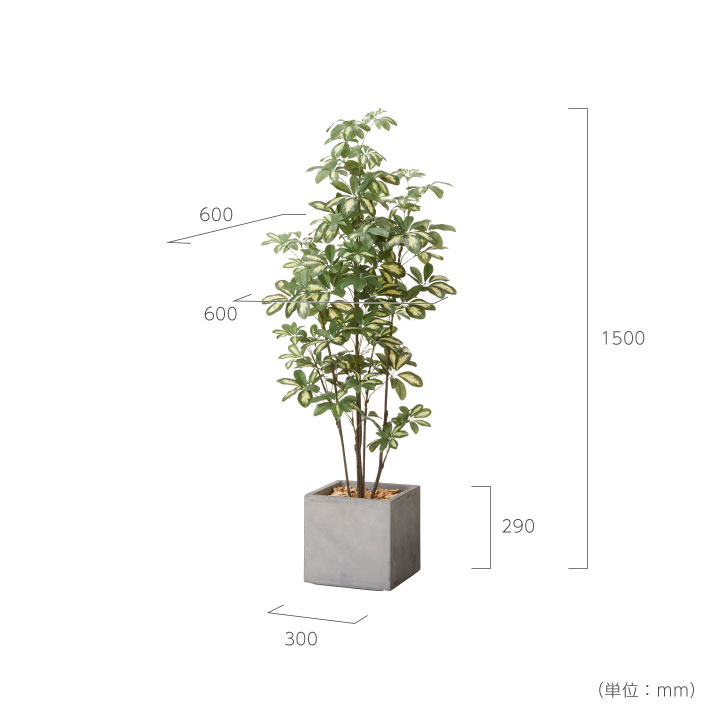 グリーン×プランターセット「w/g シェフレラ×Cube」[高さ150cm・人工樹木・人工観葉植物]