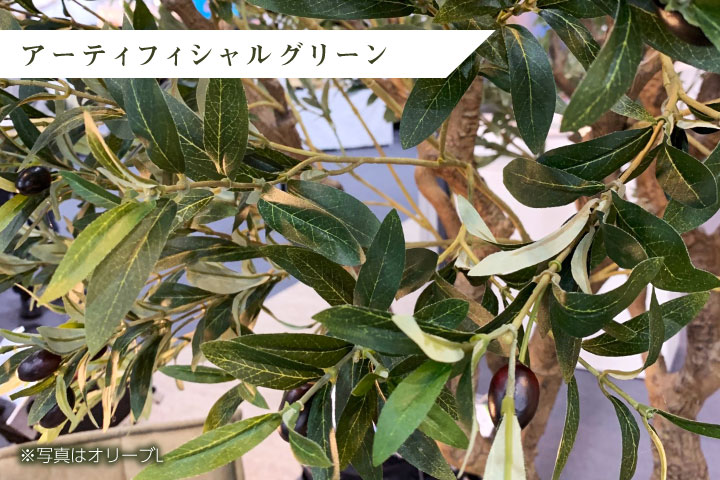 グリーン×プランターセット「w/g シェフレラ×Tall Round」[高さ175cm・人工樹木・人工観葉植物]